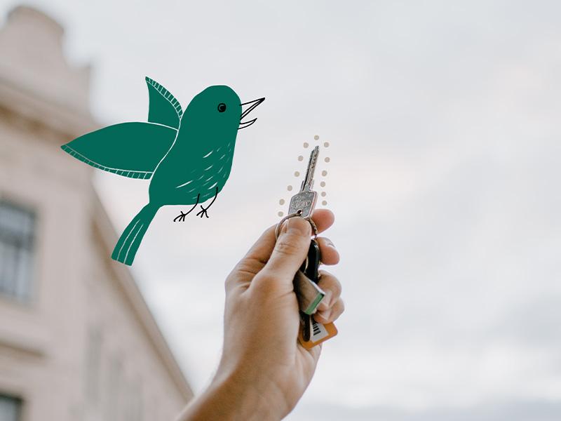 Eine Hand hält einen Wohnungsschlüssel in die Luft. Daneben fliegt ein gezeichneter Vogel.